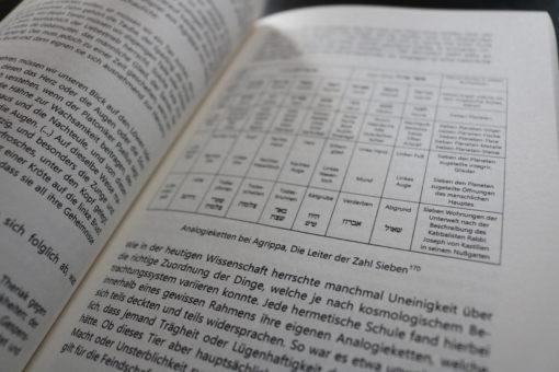 Magische Praktiken des Managements Agrippa Nettesheim